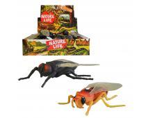 Hmyz strečový 24ks v dbx,12cm