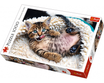 Puzzle 1000 Roztomilé mačičky