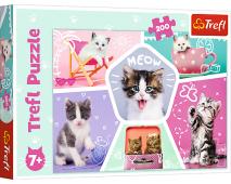 Puzzle 200 Mačiatka