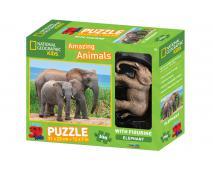 3D Puzzle Slon 100 + figurka