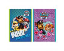 Notes Paw Patrol A7