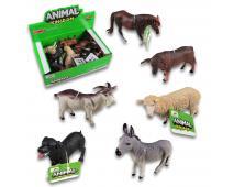 Zvieratká domáce