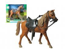 Kôň stojaci