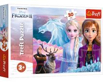 Puzzle 30 Frozen 2